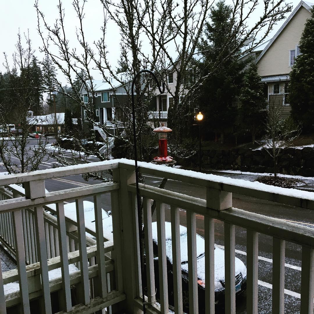 Instagram post by Ann Chihak Poff, E-RYT 200 ��� Mar 6, 2017 at 3:09pm UTC  http://www. StrongMamaBlog.com/article.jsp?na me=instagram-post-by-ann-chihak-poff-e-ryt-200--mar-6-2017-at-309pm-utc&amp;t=rsm &nbsp; …  #snow #pdxsnow <br>http://pic.twitter.com/NRWLiYQjEG