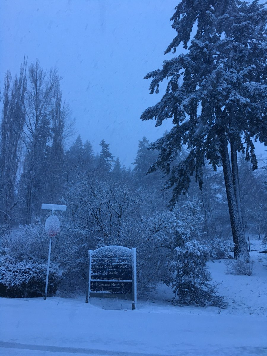 It&#39;s snowing  in Washington Park at 800 ft. Visitors to @OregonZoo &amp; @PortlandCM should plan accordingly #pdxsnow #pdxtst #pdxwx<br>http://pic.twitter.com/733ESBmWuP