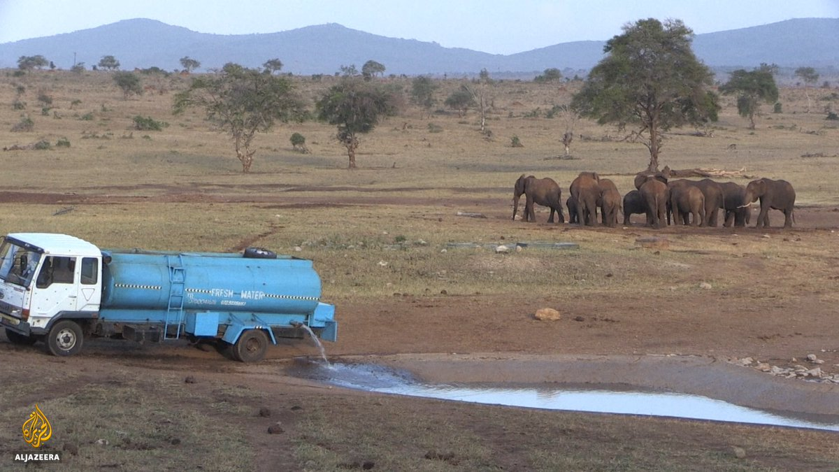What a beautiful human-being this man is. Driving 70km to give wild life water during the drought. #Kenya https://t.co/d5tVVERxk6