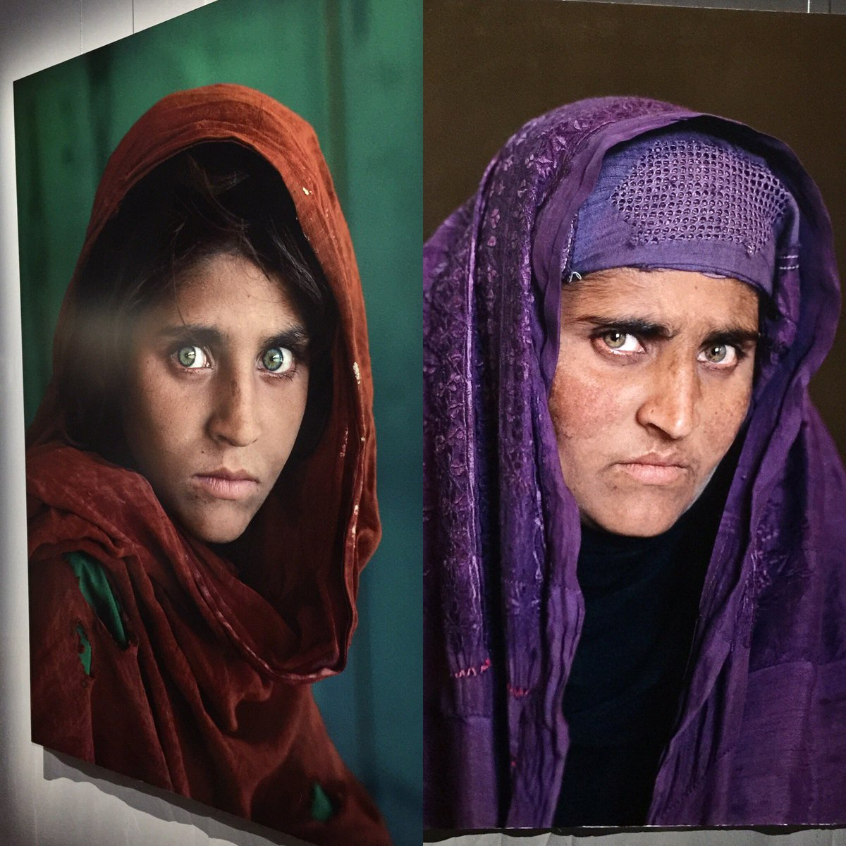 What does afghan girl look like now