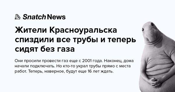 """В Госдуме хотят перенести выборы президента России на 18 марта - годовщину оккупации Крыма: """"Это очень хорошо"""" - Цензор.НЕТ 5463"""