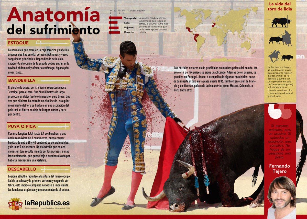 La disminución del IVA de los toros genera discusión en España