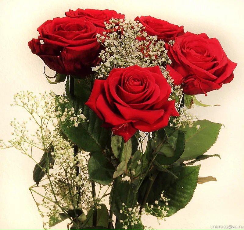 Открытки к подруге с цветами