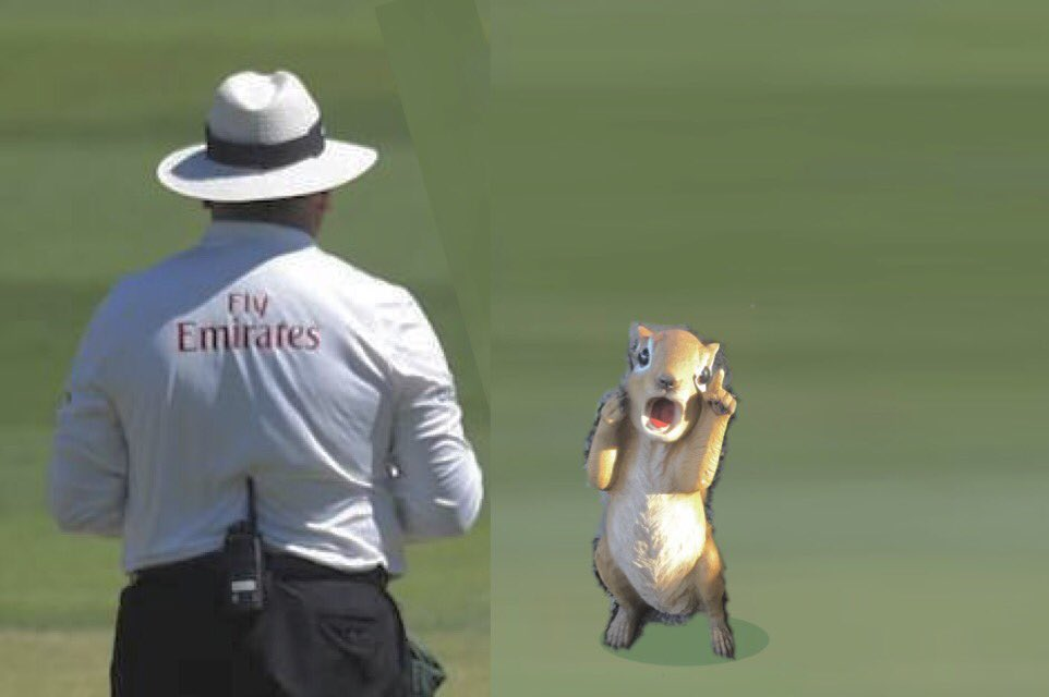 Another appeal.   Umpire said he was nuts.   #Demonsquirrel @ALDIAustralia #INDvsAUS #howzat @MClarke23