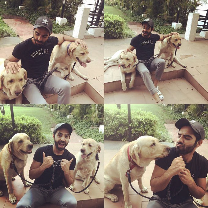 Guyss meet my new friends in Banglore -  Jazz and Tango  P.S - Ironically my T-shirt says Adopt Me #doglover https://t.co/bBRB4yBCOV