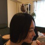 室田伊緒のツイッター