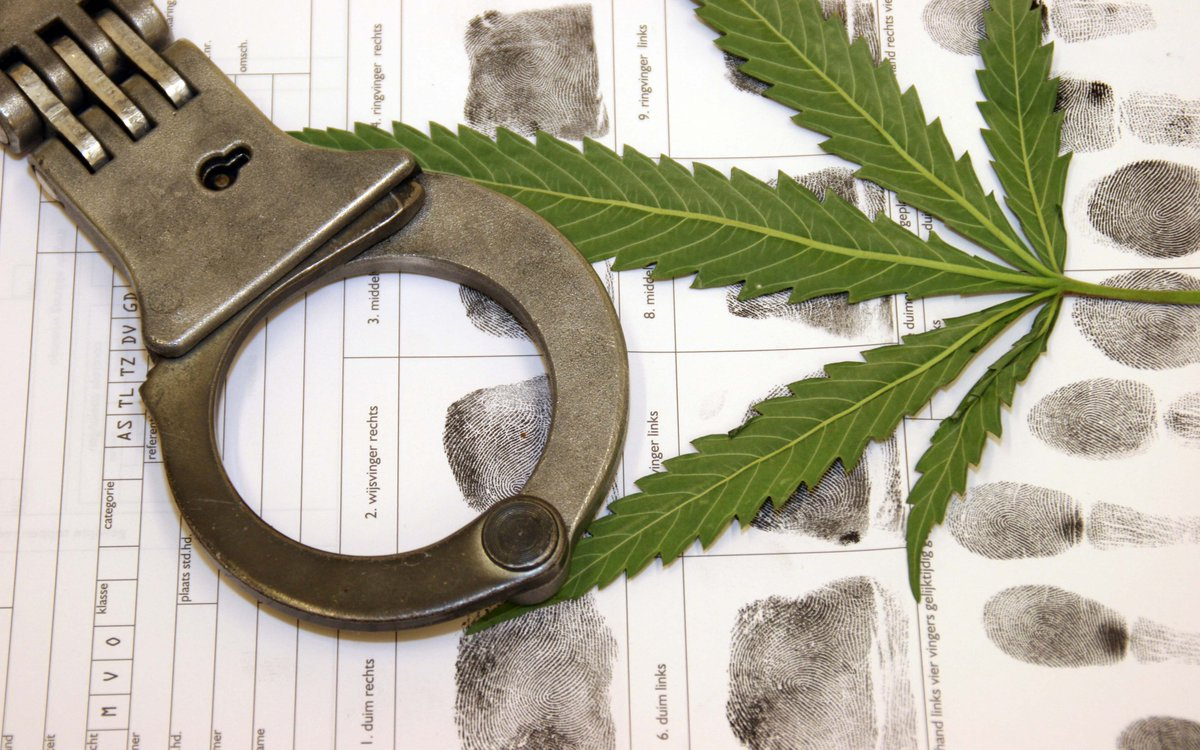 Latest Data on the Feds' War on Drugs Released – High Times