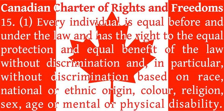the canadian charter of rights and freedoms essay Free essay examples, how to write essay on canadian charter of rights and freedoms example essay, research paper, custom writing write my essay on charter judges court.