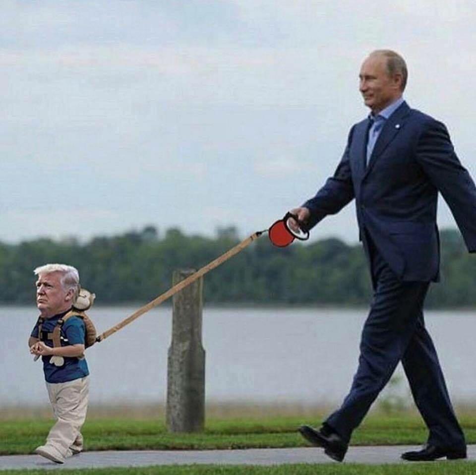 Putins pet