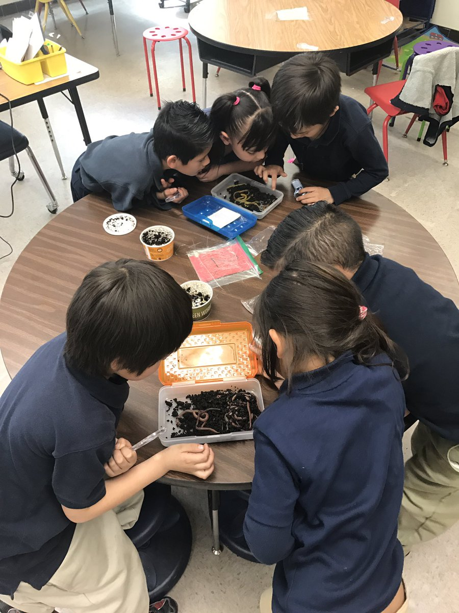 What better way to learn about living and non living than with WORMS! #BeallEagles #JuniorScientists #GoForTheGold<br>http://pic.twitter.com/jGuVSq1xPI