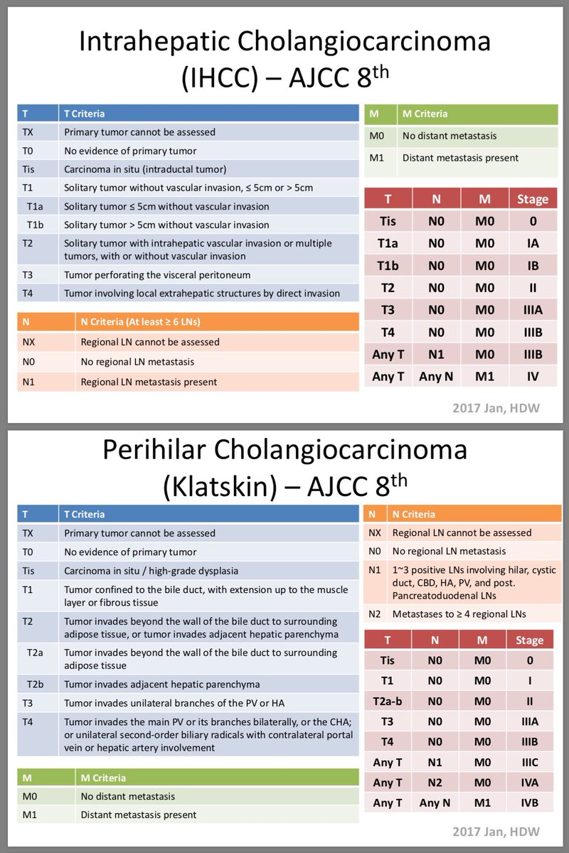 ajcc cancer staging manual 8th edition melanoma