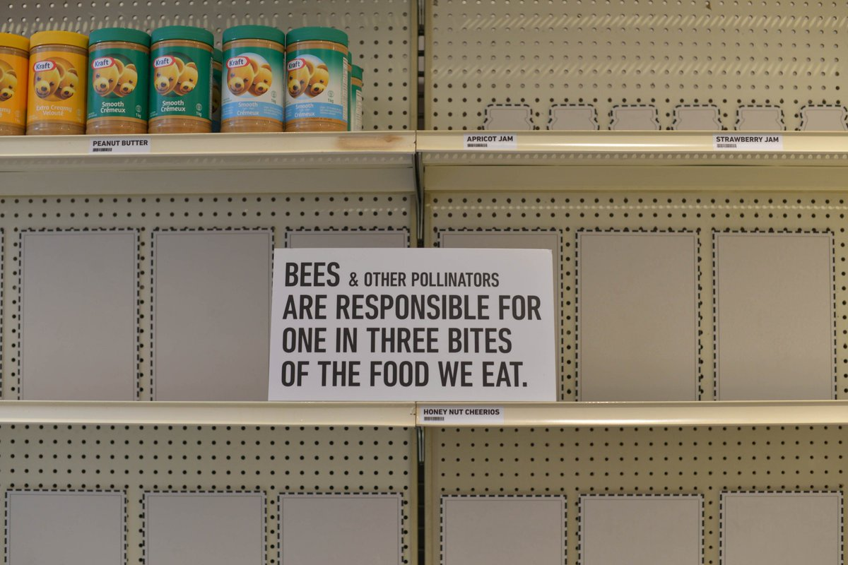 Environment Ontario On Twitter A World Without Bees Cheerios Gave Us Glimpse Of Future Grocery Store If We Fail To BringBackTheBees