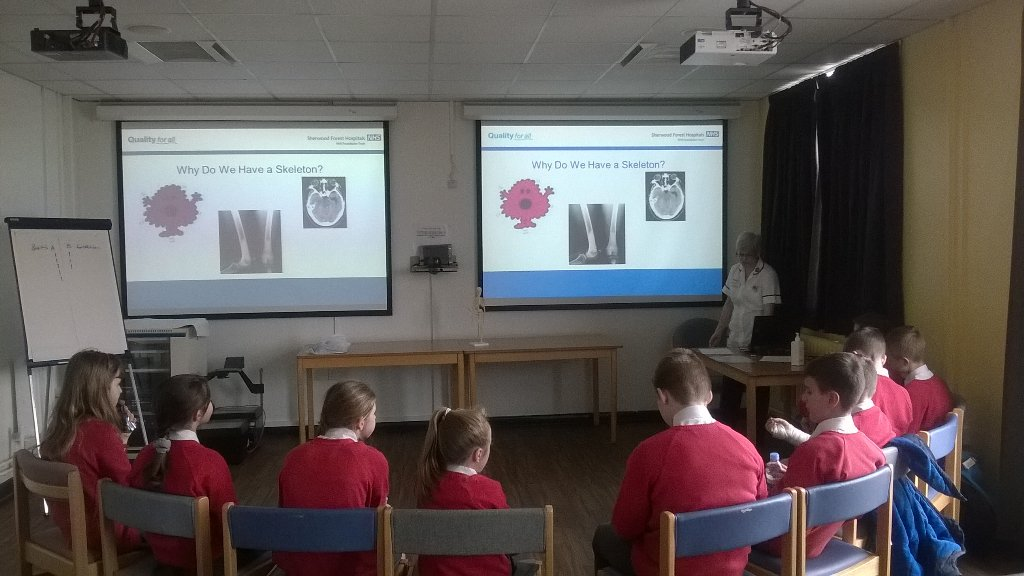 """year six on twitter: """"mrs fisher, a radiographer, is now telling, Skeleton"""