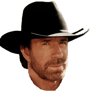 Thank you. Happy birthday! Aint you lucky? It\s Chuck Norris\ birthday, too!