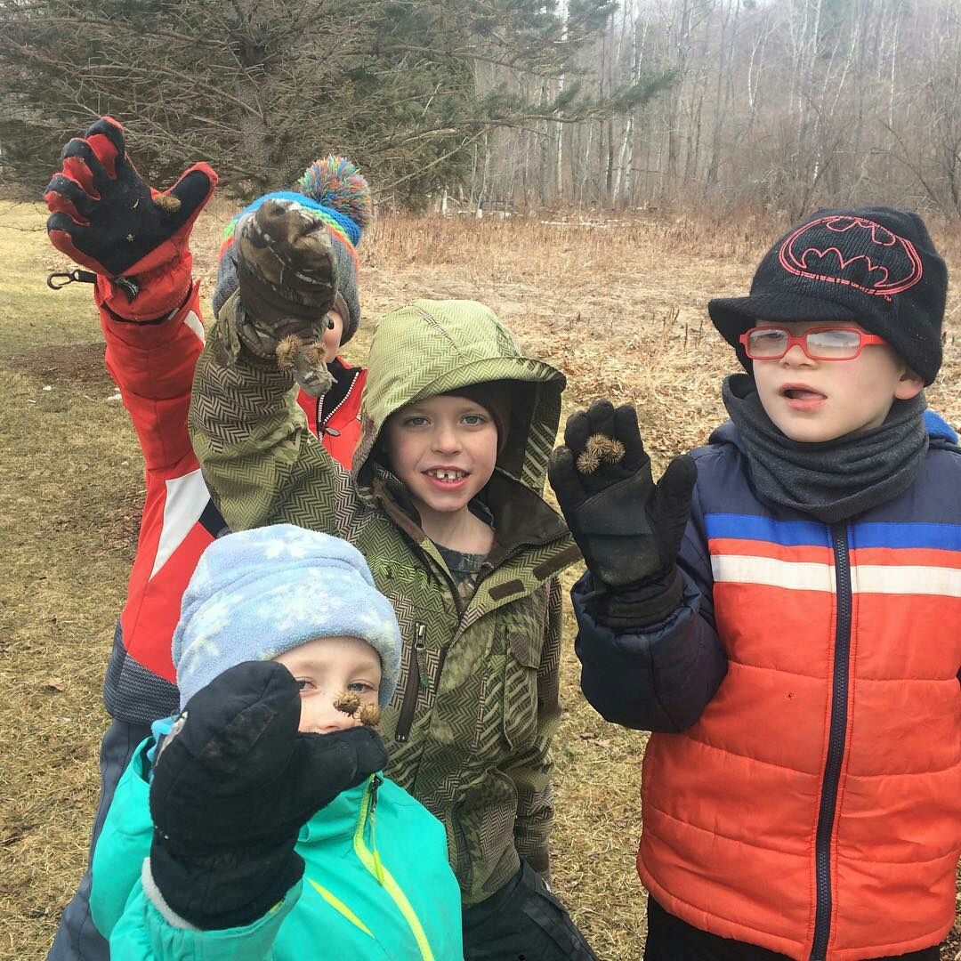 "Reposting @brewsterpiercevt ""Burdock discovery outside during Forest Friday! What part of the plant is the burdock?"" https://t.co/jSM2xCofe4 https://t.co/RvTaUArSSp"