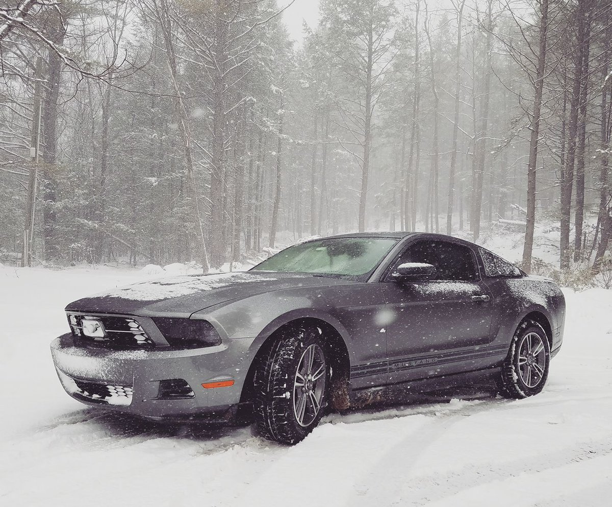 Ford Mustangverified Account