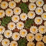 素敵!食べられるお花が満開!