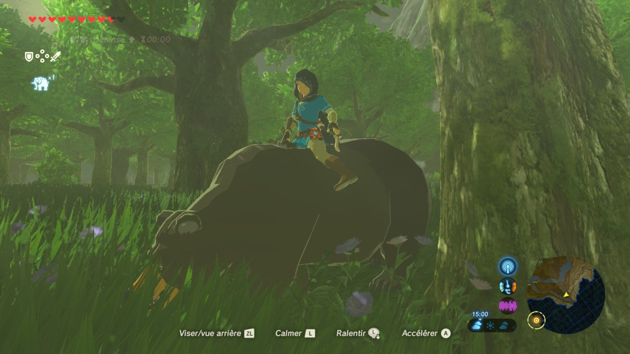 ZELDA BREATH OF THE WILD - TOPIC OFFICIEL - Page 30 C6oN1hBU8AAsQzx