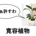 汎用性高すぎw観葉植物と加湿器の文字替えが秀逸すぎて笑える!