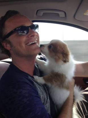 Happy birthday to actor and Band From TV singer David Anders!