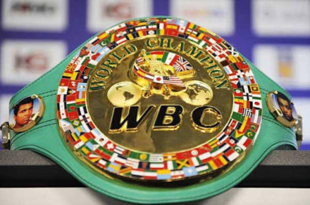 برچسب #世界ボクシング評議会 در...