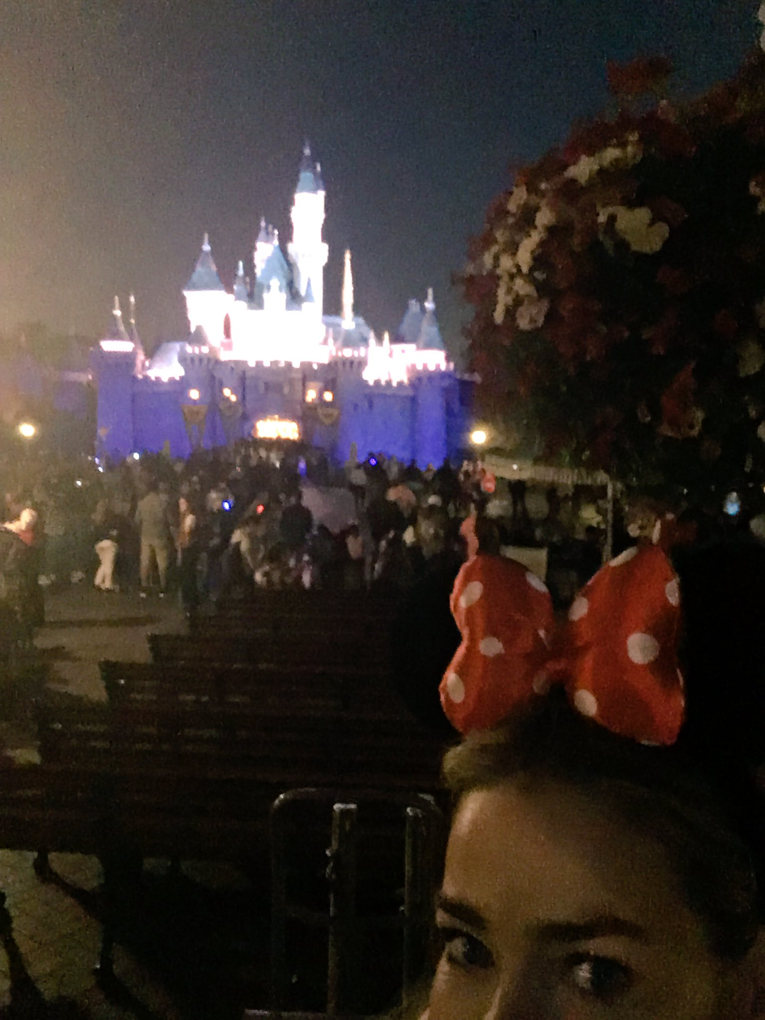 Thank u @Disneyland best day ever! https://t.co/8UrDcFTpHn