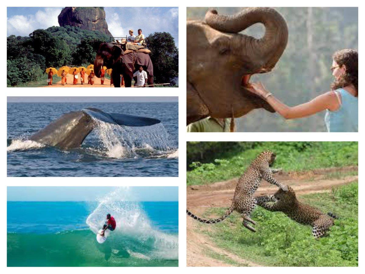 A LANKA TRAVEL & TOURS IN SRI LANKA photo