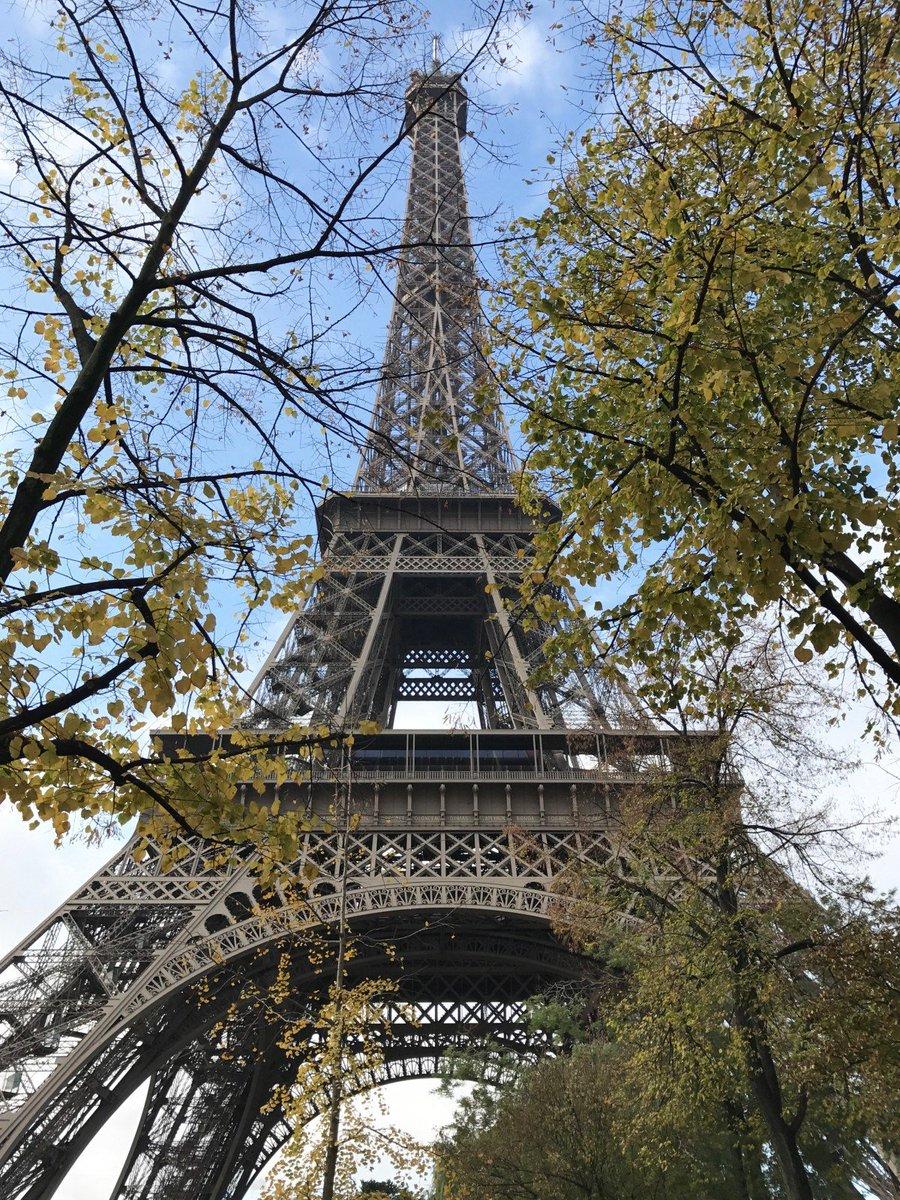 Grand hotel du palais royal paris black tomato - 0 Replies 4 Retweets 9 Likes