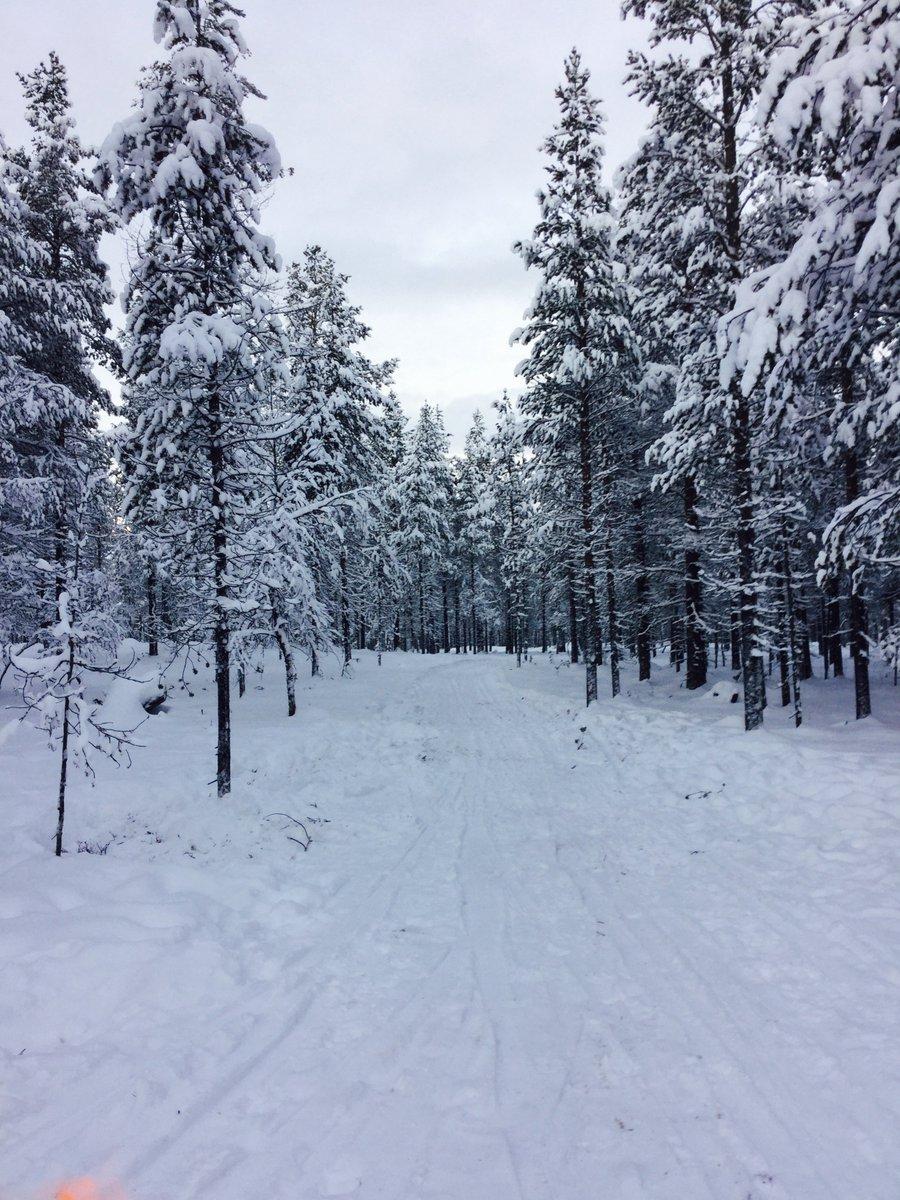 Missing this #winterwonderland <br>http://pic.twitter.com/ddPNNLzIKL