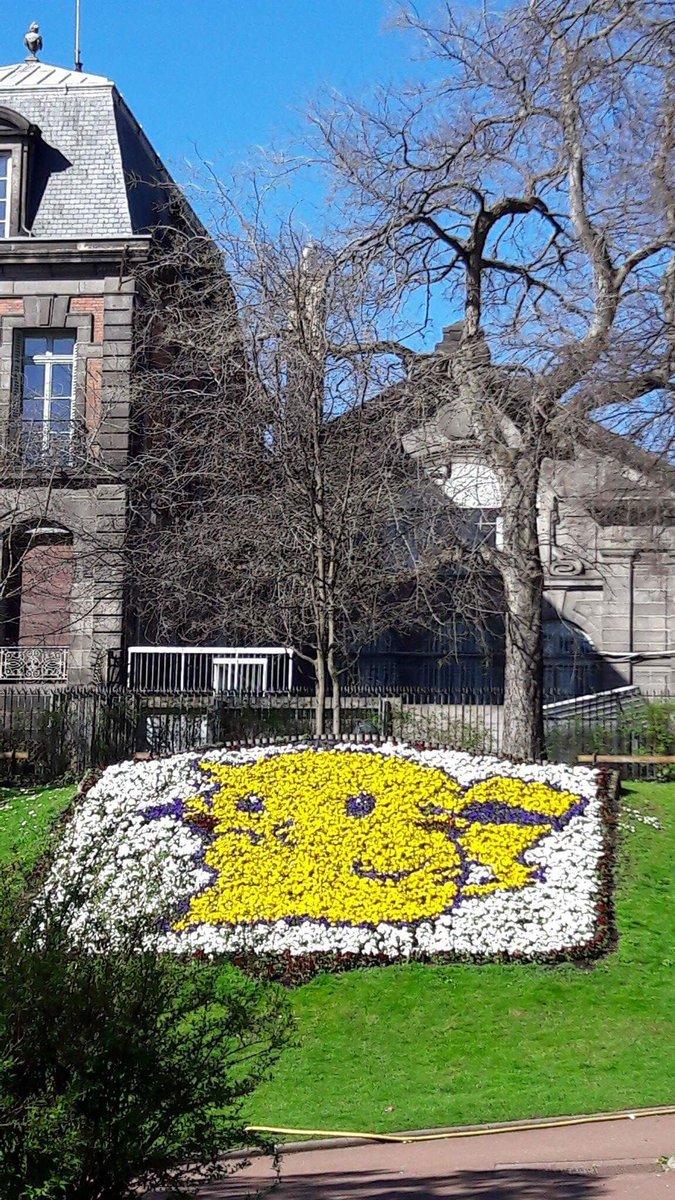V de rincquesen on twitter un pikachu floral au jardin for Jardin lecoq