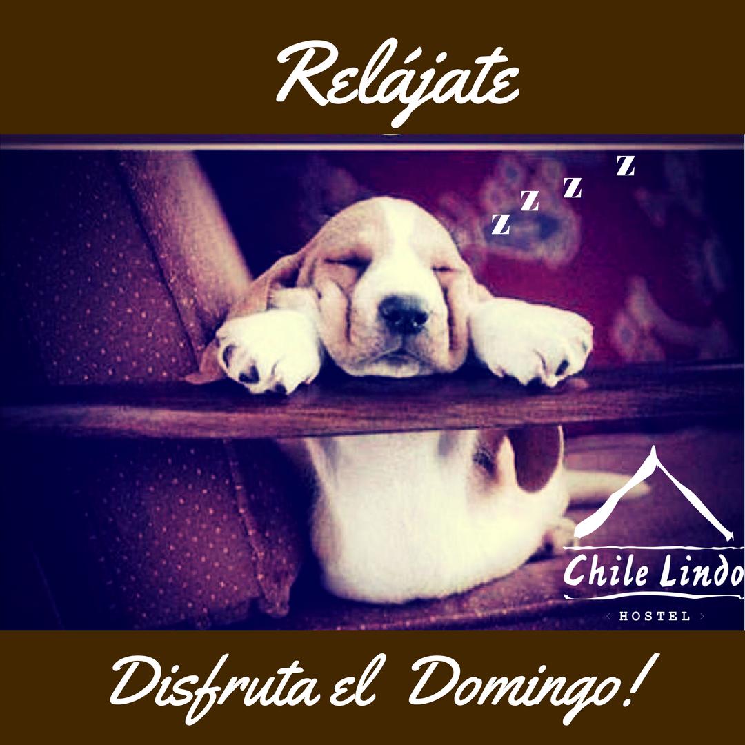 Lindo dìa!  #felizdomingo #relax #compartir #viajes #traveling # instagood # lovelife #travel https://t.co/DzqWEShdbz