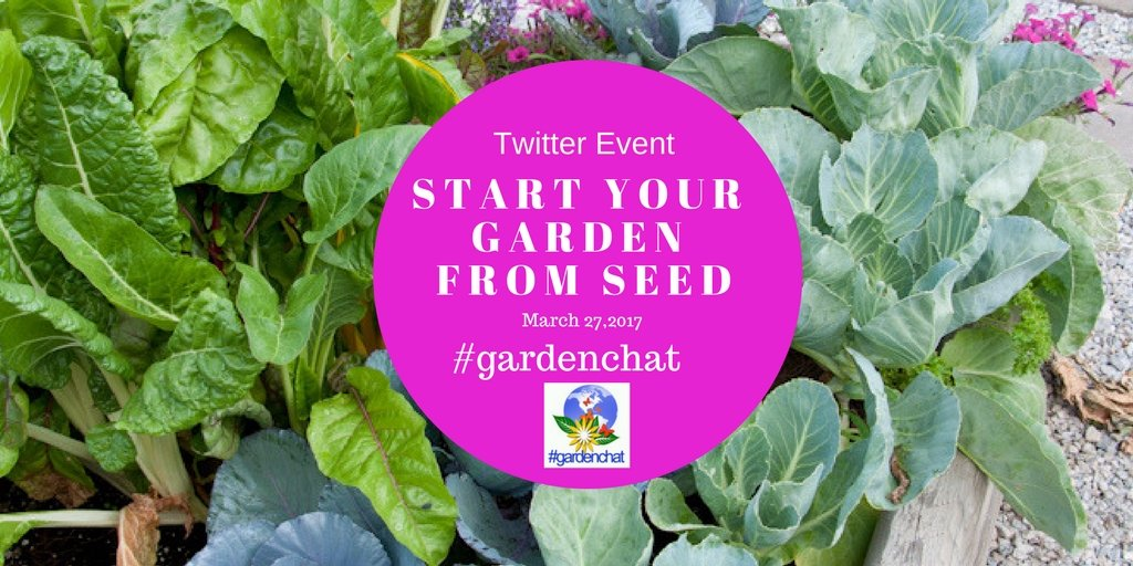 Start Your Garden From Seed: #gardenchat Twitter Event https://t.co/ERuMQhY0db https://t.co/cEytGu6BFz