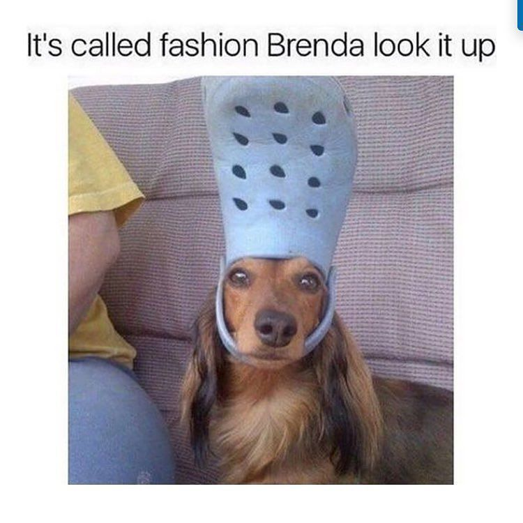 For real! Check what&#39;s new. We are open till 4! #shopsmall #shoplocal #fashion #sofunny #b…  http:// ift.tt/2n6094k  &nbsp;  <br>http://pic.twitter.com/jZoRmuL8E1