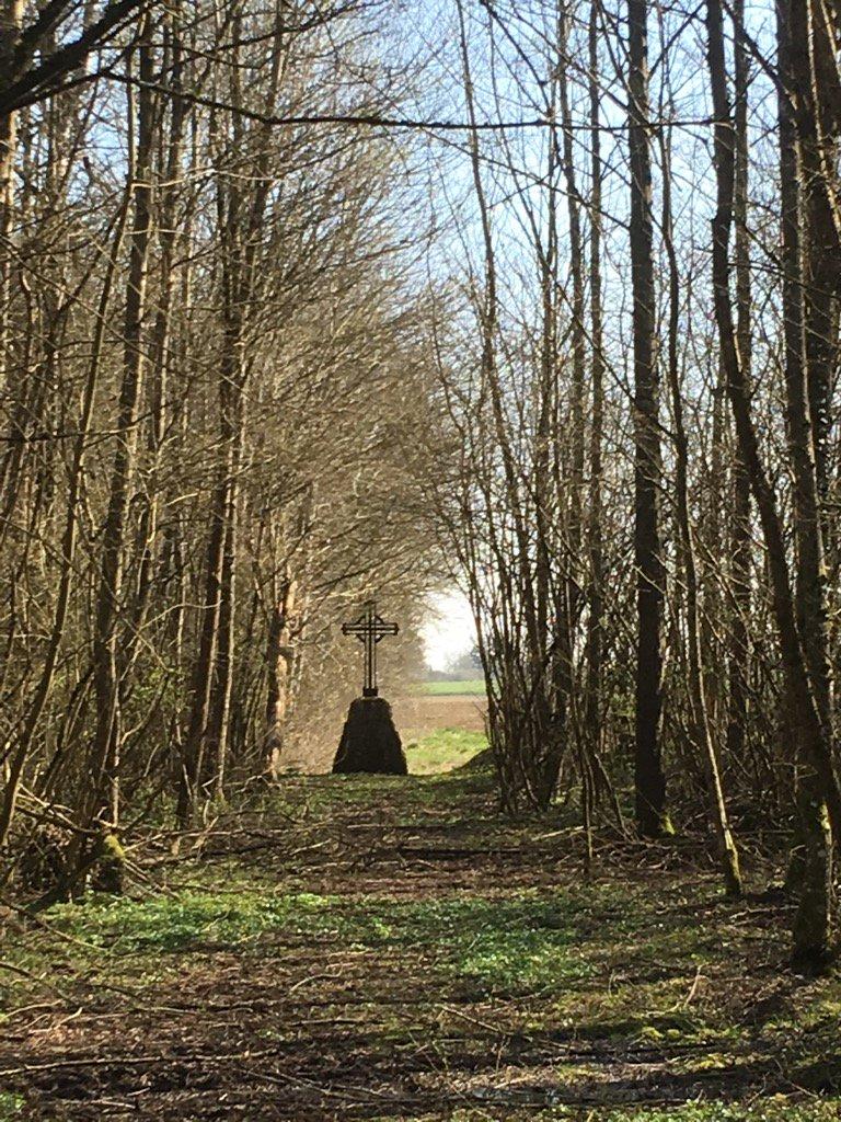 #Vaux village &quot;mort pour la France&quot; la nature reprend ses droits - puisse la mémoire perdurer #Verdun <br>http://pic.twitter.com/XG3JkwCgWe