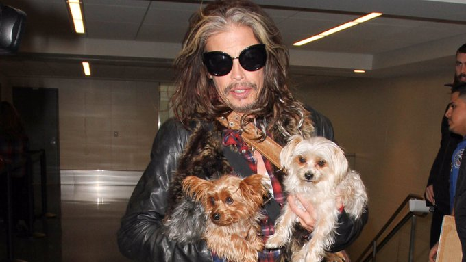 Happy birthday to everyone\s favorite weird aunt, Steven Tyler