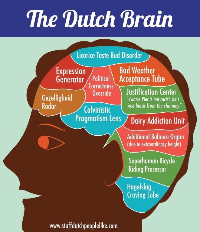 The Dutch Brain ... https://t.co/W7hjjey6rd