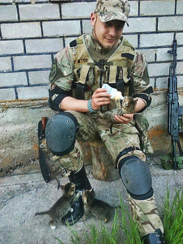 Little squad 😻😻😻  #army #Ukraine #cats #war #soldier #cat #freedom #pet #pets