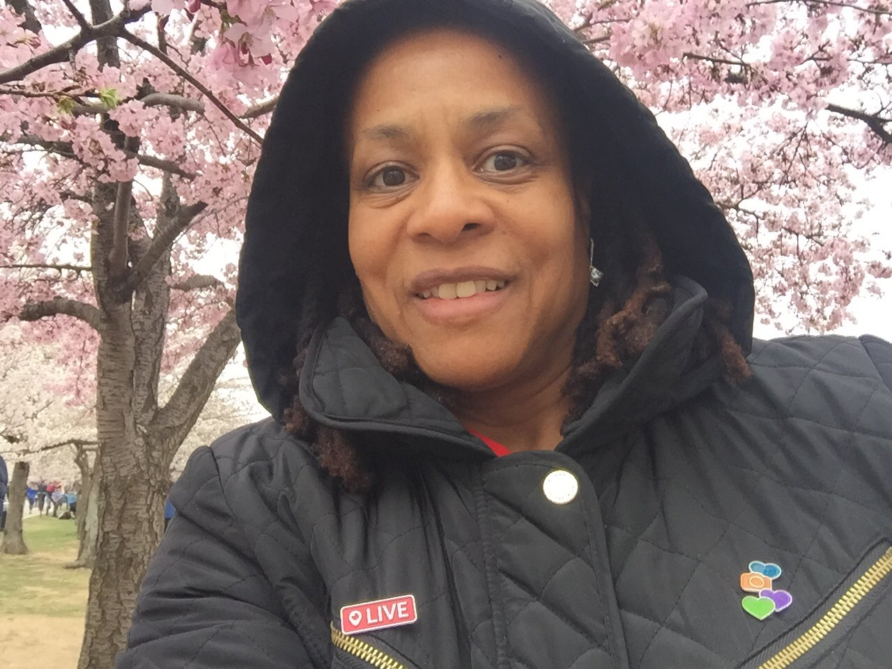 Thumbnail for National Cherry Blossom Festival #WashingtonDC