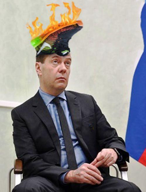 Элитный участок кедровой рощи в 4000 га, где находится дача премьера РФ Медведева, арендуют меньше чем за 1 доллар в год - Цензор.НЕТ 2671