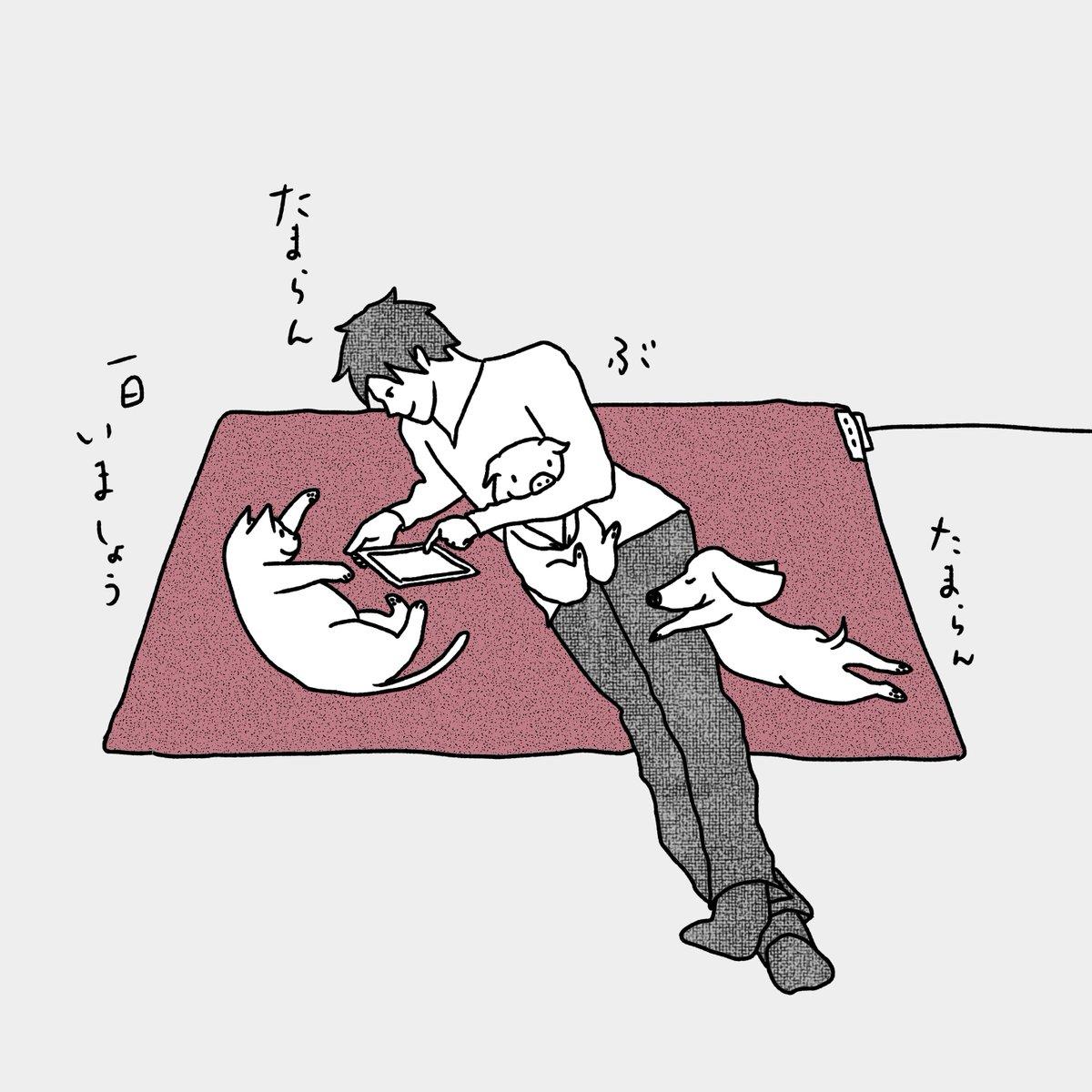 """石川ともこ on twitter: """"寒い時はホットカーペットに集合して今週も"""