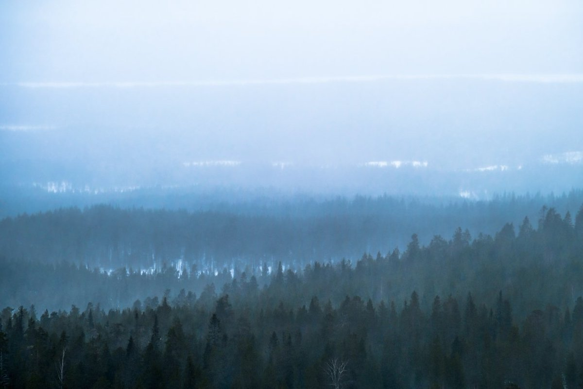 Hailstorm approaching #Ruka fjell and blurring everything in the horizon yesterday in #Kuusamo, #Finland. #travel<br>http://pic.twitter.com/856bk2xlPI