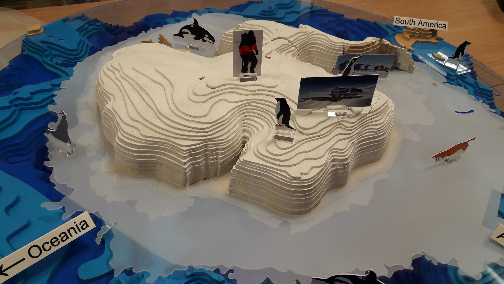 I want this as a coffee table! Antarctica puzzle for Pole to Pole at #LFoS17 @UniversityLeeds #SciComm https://t.co/fKFsHkQUup