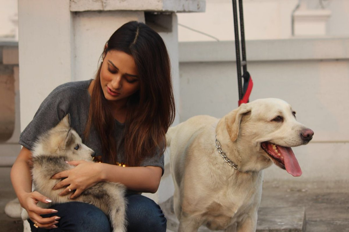 Here\'s @mimichakraborty showing her dogs Chickoo & Max some love. Watch #ADogsPurpose in cinemas this Friday!