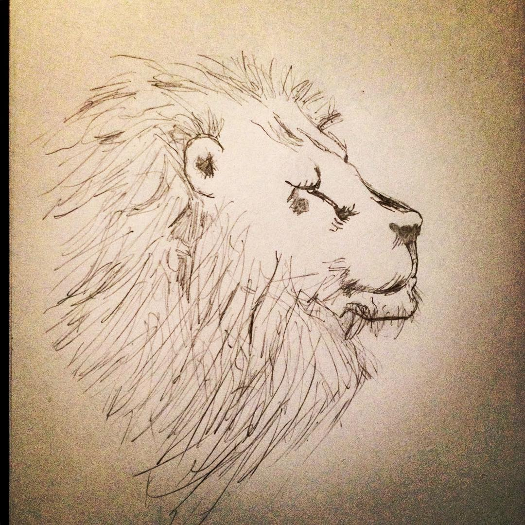 Dessin du jour #dessin #drawing #draw #draweveryday #lundi #monday #lion #leo #animal #art #picoftheday #amateur #blackandwhite #noiretblanc<br>http://pic.twitter.com/DaaPIBVzY2