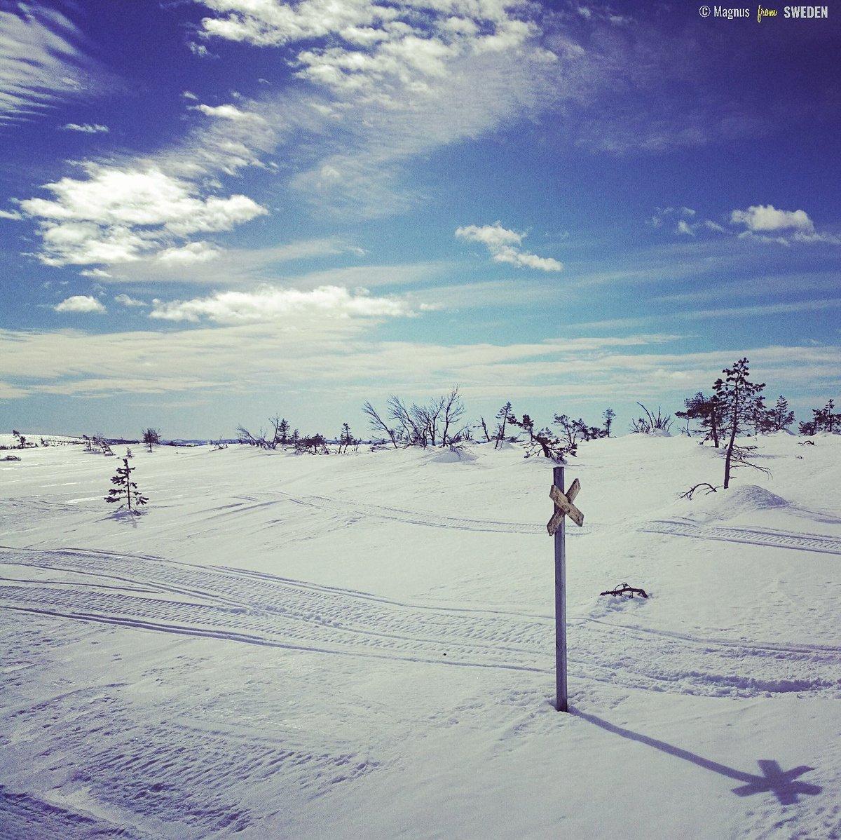 #snow #mondaymotivation #photography #500pxrtg #PhotoRTG https://t.co/...