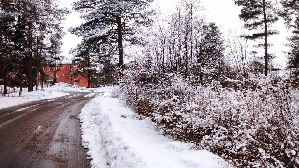 #spring is nearly there #northern #finland #snowy #march #suomi #kevät #maaliskuu  http:// ift.tt/2n9QVEs  &nbsp;  <br>http://pic.twitter.com/fRQiH2L6CG