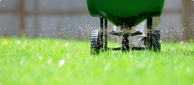 We talk about some Spring Fertilizing Tips in our podcast this week.  Take a listen!   http://www. stitcher.com/s?eid=49554847 &amp;refid=stpr &nbsp; …   #podcast #homeimprovement <br>http://pic.twitter.com/E7ob8yWN9x