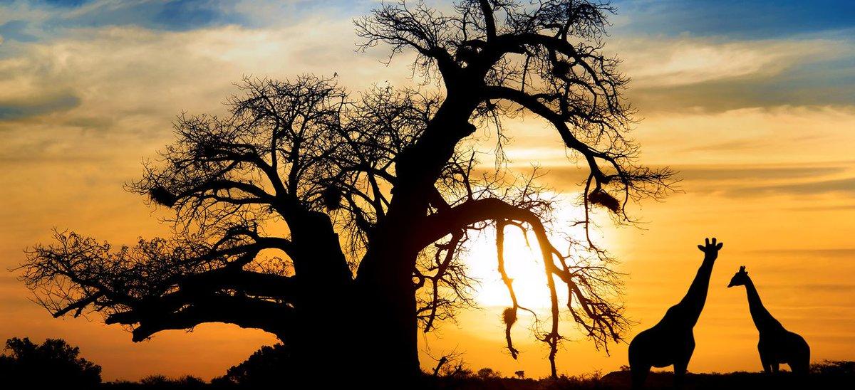 Kenya, la nuova patria del turismo in Africa