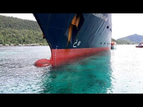 Thumbnail for Cruise ship destroys coral reef