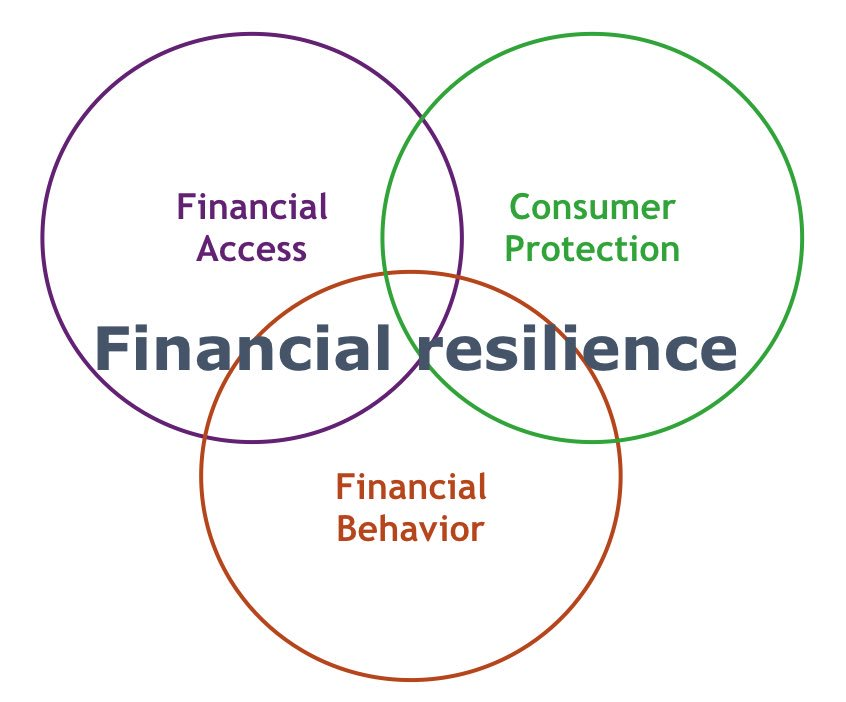 Understanding importance of financial resilience. Households' responsibility & financial well-being, social cost, wealth equality & cohesion https://t.co/5d9nYyGbj8